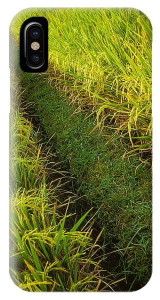 IPhone Case featuring the photograph Rice Field Hiking by T Brian Jones