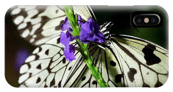 Rice Paper Butterfly IPhone Case