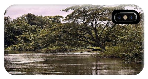 Riparian Rainforest Canopy IPhone Case