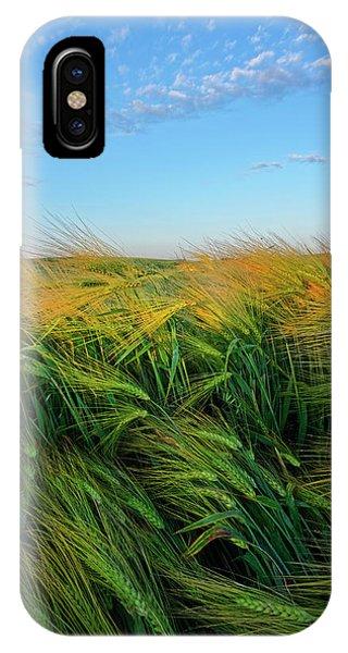 Ripening Barley IPhone Case