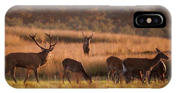 Magazine Cover iPhone Case - Rivals by Niklas Banowski Wildlifephoto