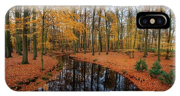 River Through Autumn IPhone Case