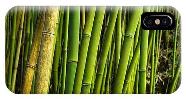 Road To Hana Bamboo Panorama - Maui Hawaii IPhone Case