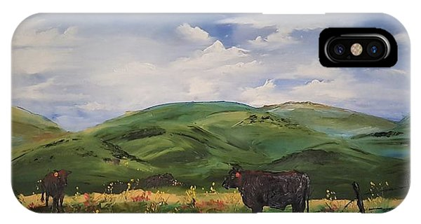 Road To Melrose, Montana         32 IPhone Case