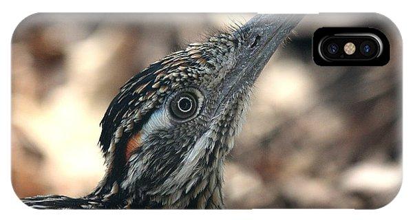 Roadrunner Close-up IPhone Case