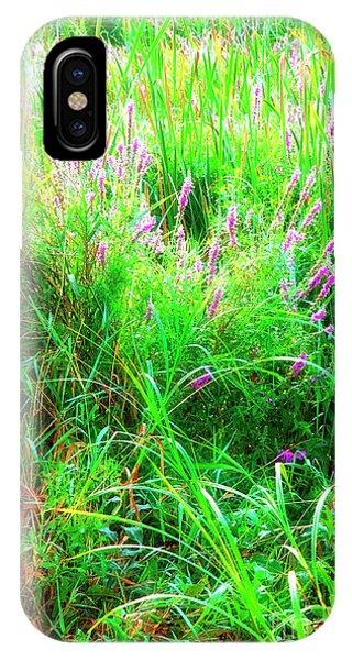 Roadside Bouquets 1  IPhone Case
