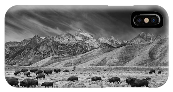 Roaming Bison In Black And White IPhone Case