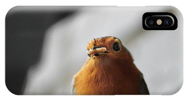 Robin Closeup IPhone Case