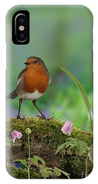 Robin In Spring Wood IPhone Case