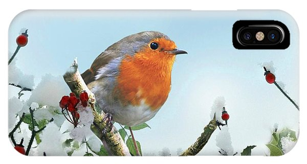 Robin In The Snow IPhone Case