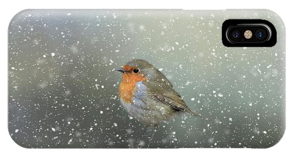 Robin In Winter IPhone Case