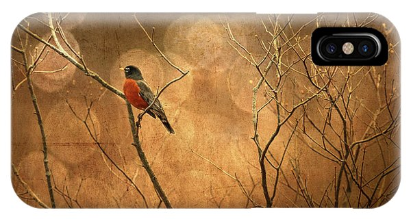Robin IPhone Case