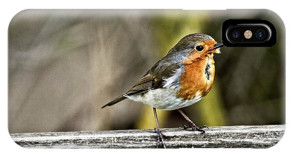 IPhone Case featuring the photograph Robin On Fence by Cliff Norton