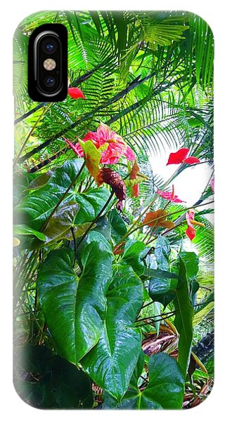 Robins Garden With Anthuriums And Ferns IPhone Case