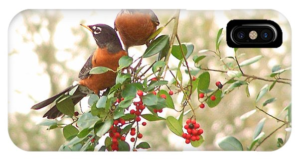 Robins In Holly IPhone Case