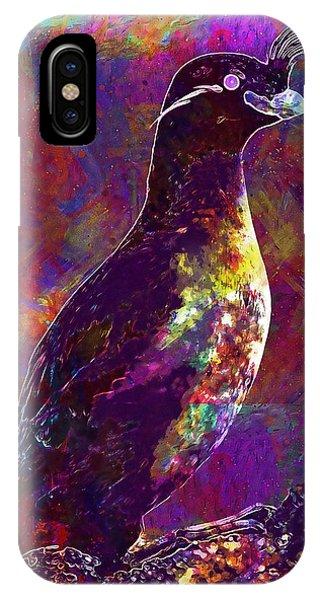 Auklets iPhone Case - Rock Bird Auklet Crested Birds  by PixBreak Art