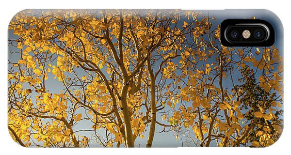 Rocky Mountain Np iPhone Case - Rocky Mountain Fall Colors by Kunal Mehra