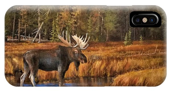 Rocky Mountain Wading Pool IPhone Case
