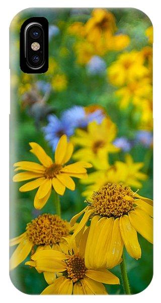 Rocky Mountain Wildflowers IPhone Case