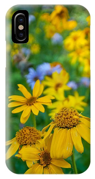 Rocky Mountain Wildflowers IPhone Case