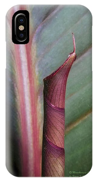 Roll Our The Red Carpet IPhone Case