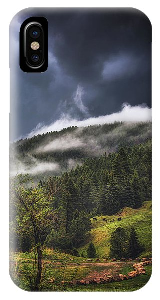 Rolling Through The Trees IPhone Case