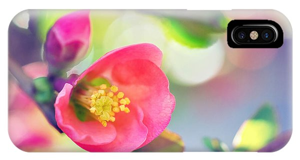 Romancing Spring I IPhone Case