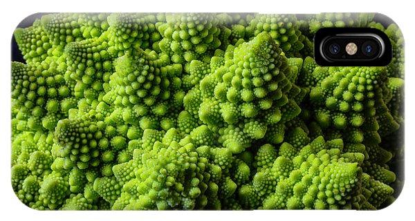 Broccoli iPhone Case - Romanesco Broccoli by Garry Gay