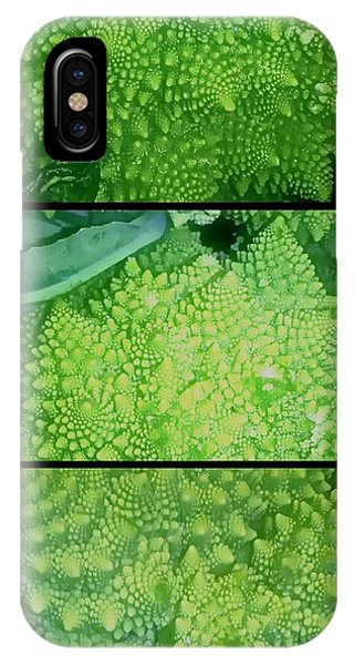 Romanesco IPhone Case