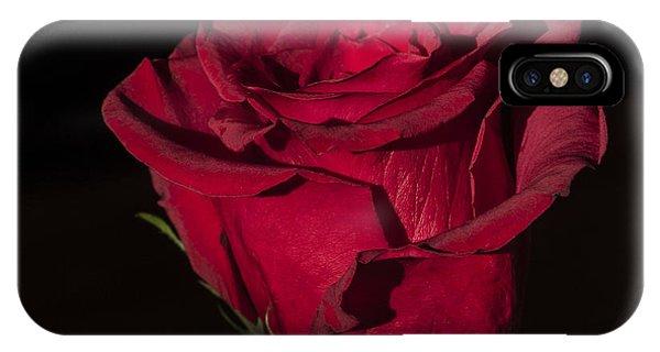 Romantic Rose IPhone Case