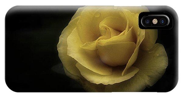 Romantic Yellow Rose 2016 IPhone Case