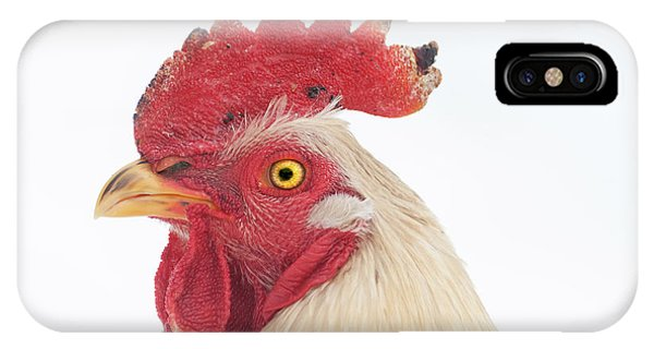 Rooster Named Spot IPhone Case