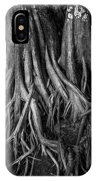 Bald Cypress iPhone Case - Roots by Marvin Spates