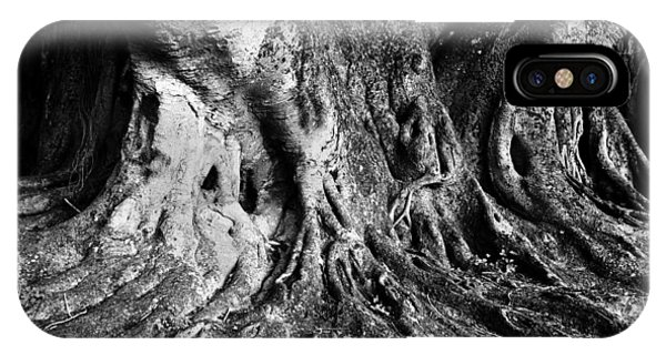 Roots Of The Banyan IPhone Case