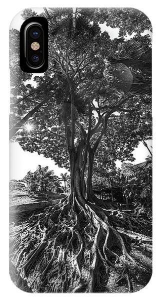 Roots To Roof IPhone Case