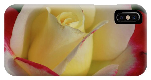 Rose 3913 IPhone Case
