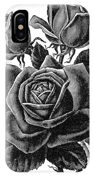 Rose Black IPhone Case