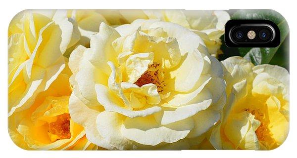 Rose Bush IPhone Case