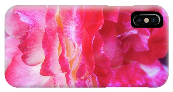 IPhone Case featuring the photograph Rose Explosion by John Brink