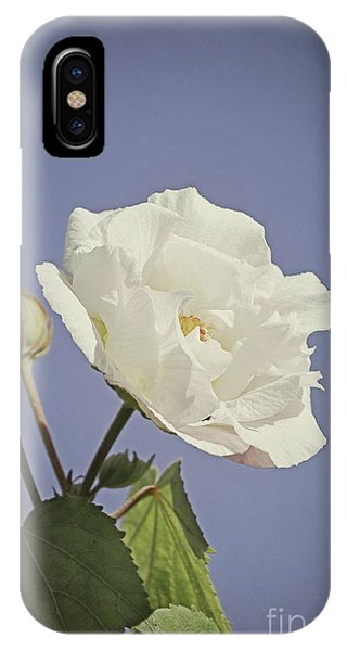 IPhone Case featuring the photograph Rose Of Sharon by Elaine Teague