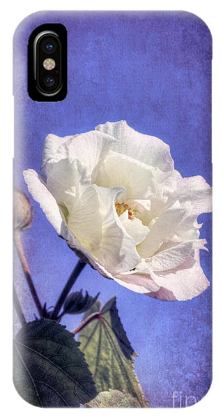 IPhone Case featuring the photograph Rose Of Sharon In Blue Fog by Elaine Teague