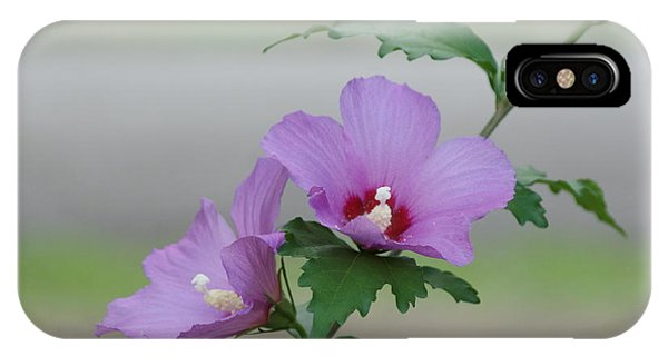 Rose Of Sharon Pair IPhone Case