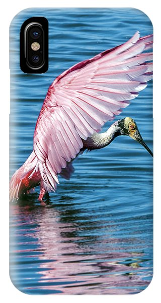 Roseate Spoonbill Landing IPhone Case