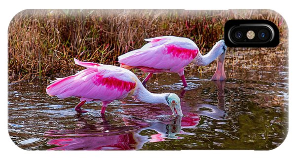 Roseate Spoonbills Swishing For Food IPhone Case