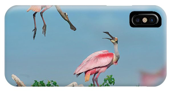 Roseate Spoonbills IPhone Case