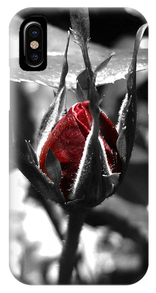 Rosebud Red IPhone Case