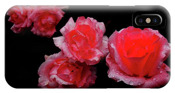 Roses And Rain IPhone Case