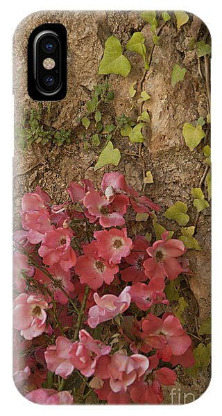 Roses In Spain IPhone Case