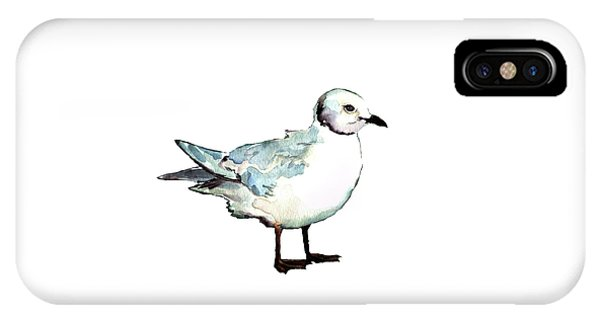 Ross's Gull IPhone Case