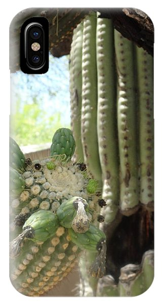 This Cactus Is Rotten To The Core IPhone Case